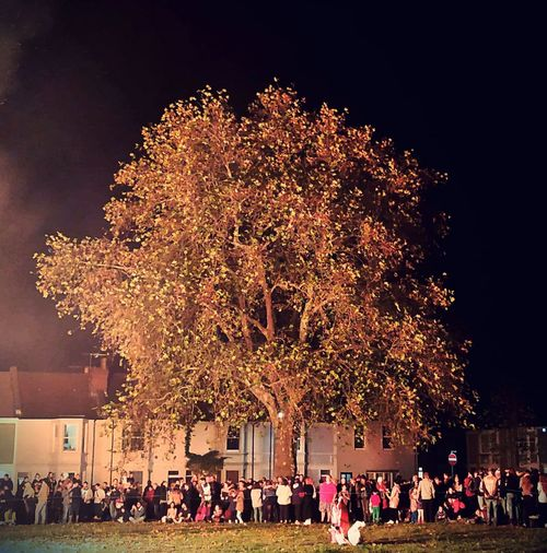 A mass of people gathered together under the embrace of a tree to celebrate bonfire night and the prevention of the blowing up of the House of Parliament on 5th November 1605 This Is Strength Outdoor Photography Festivals And Celebrations Nightphotography Bonfire Night people and places NatureandPeople Events Of Life