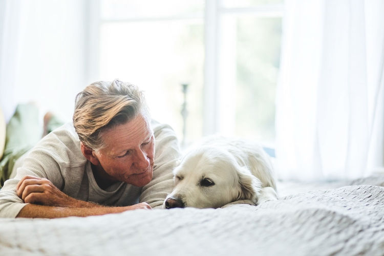 Dog with man relaxing at home