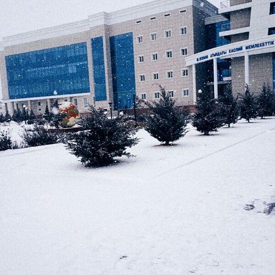 Hello World Christmas Christmas Day Beautiful Day Snow ❄ Enjoying Life Winter Sky Cold Winter ❄⛄ Winter Hi!