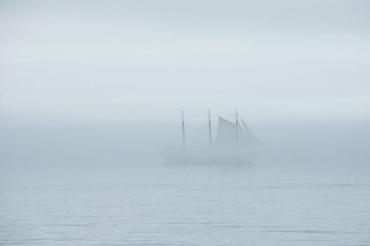 Fog No People Outdoors Day Water Nature EyeEm Selects EyeEmNewHere Tranquility Canada Coast To Coast Sailing Boats Silent Moment Eery Atlantic Ocean Halifax, Canada The Week On EyeEm