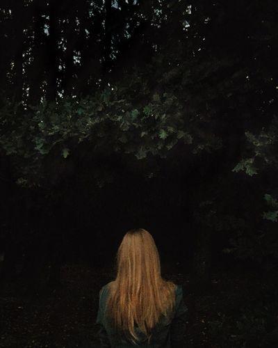 Looking into darkness IPSDark Night Forest