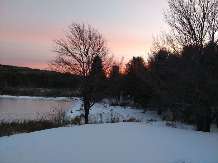 Have you ever wondered where peace and serenity lie? I found it. Unedited Unedited Photo No Filter Schoharie Valley New York New York Upstate New York Peaceful Peace And Quiet Peaceful Peaceful View My Home Breathtaking Sunset Silhouette No People Tree Nature Outdoors Sky Beauty In Nature
