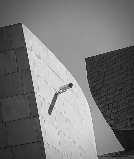 Guggenheim Bilbao revisited 2 Architecture Built Structure Building Exterior Low Angle View Outdoors Black And White Guggenheim Bilbao Minimalistic Camera Spy Big Brother Is Watching You