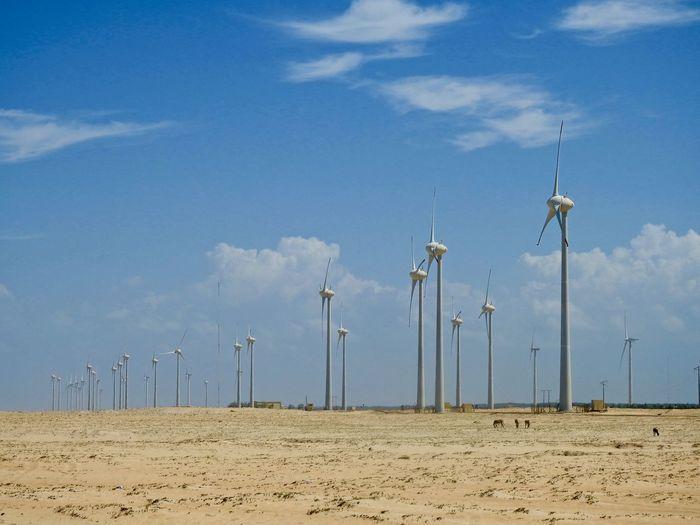 Windmills on landscape against sky
