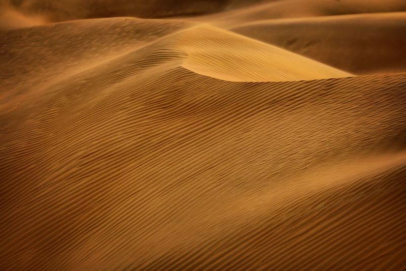 Full Frame Shot Of Sand Dune