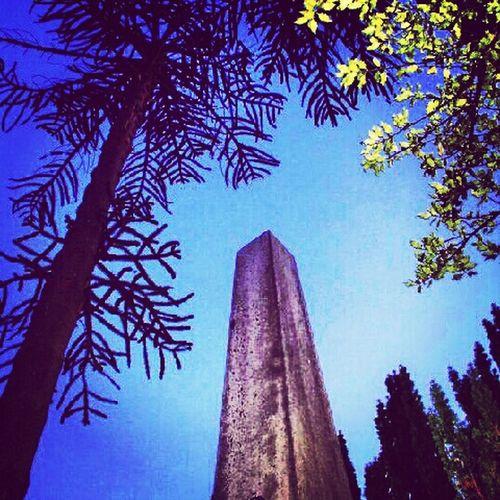 #Cemetery#Largs#