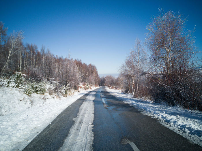 Empty road along trees during winter