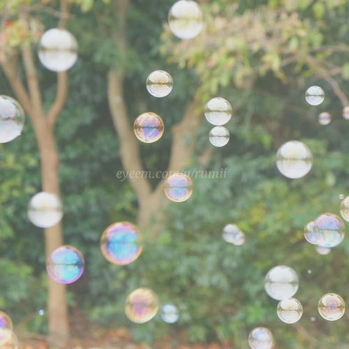 My last birthday picnic:)Macro_collection Bubbles Macroporn Macro Photography