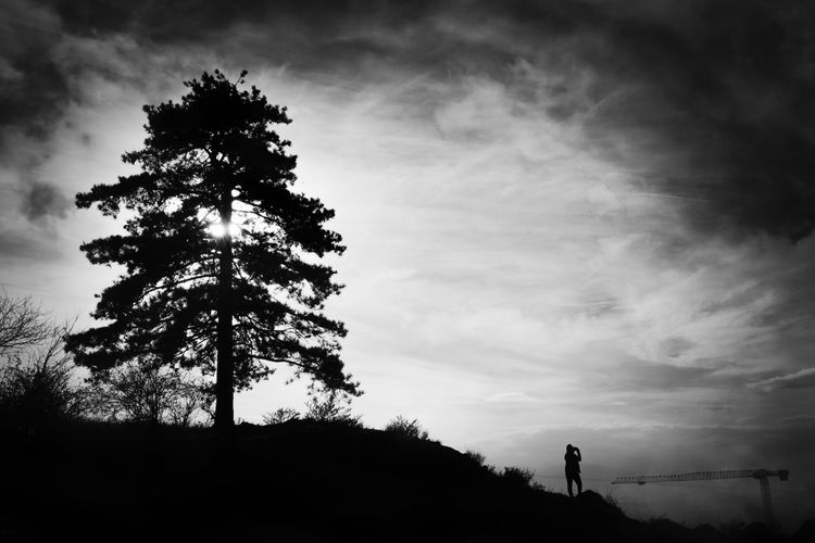 Photographer and tree silhouettes under dramatic sky. Sky Tree Cloud - Sky Plant Silhouette Beauty In Nature Nature Tranquility Tranquil Scene Scenics - Nature Land Low Angle View Outdoors One Person Field Non-urban Scene Standing Growth Ways Of Seeing Branches Blackandwhite Black And White Fine Art Photography