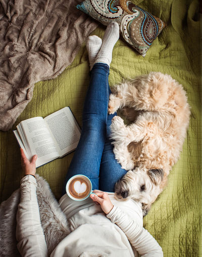 Directly above shot of person with dog on book