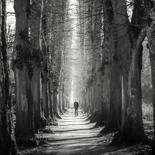 Blackandwhite Celebrate Your Ride Cycle Forest Human Representation Leading Lens Flare Motion Narrow Nature Path Portrait Ruined Sculpture Splashing Sunbeam The Way Forward Tree Tree Trunk Trees Water