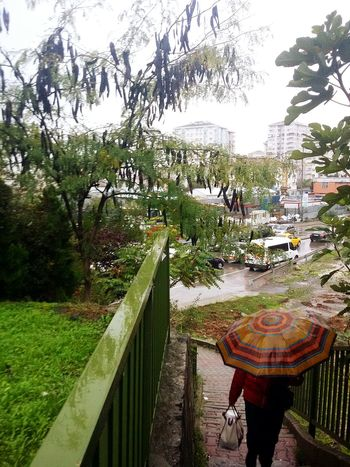 Capture The Moment Raining Authumn