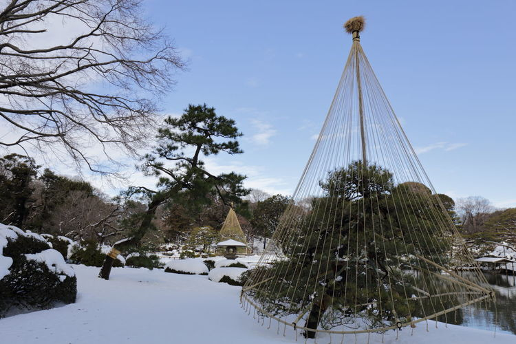 Cone structure covering tree on snow covered landscape