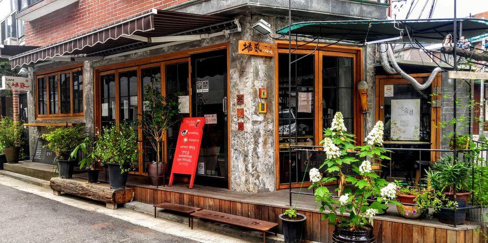 Beautiful Cafe Cafe Korea Seoul Sensitivity Sensitive Sensitive Photo Sensibility Plant Built Structure Architecture Nature Outdoors No People Flower Day