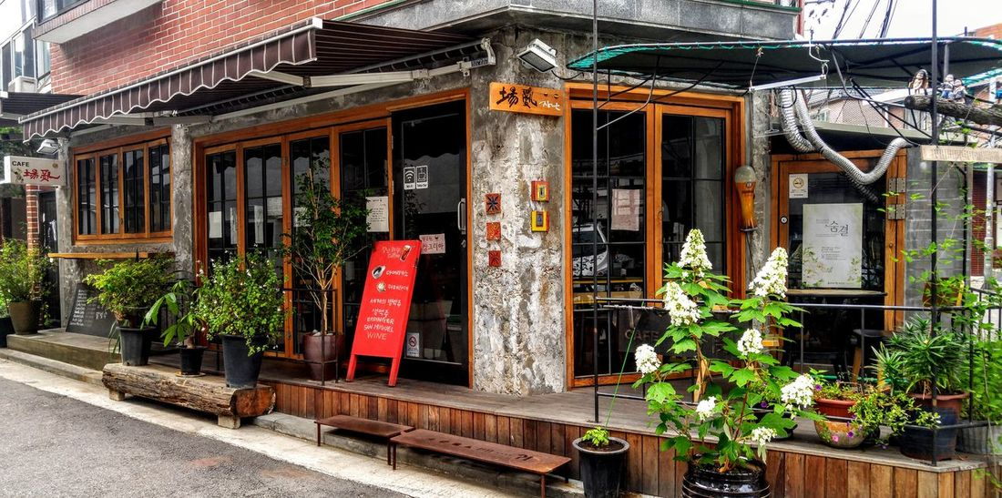 Beautiful Cafe Cafe Korea Seoul Sensitivity Sensitive Sensitive Photo Sensibility Plant Built Structure Architecture Nature Outdoors No People Flower Day