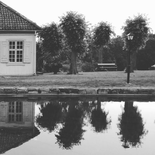 Trees in Nyckelviken MADE IN SWEDEN Bw_nature Tree_collection  Bw_trees Water Reflection Reflection