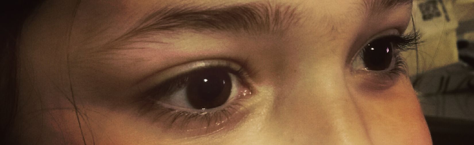 Human Eye Eyes Women Sguardo  Sguardi Sguardoprofondo Sguardi Intensi