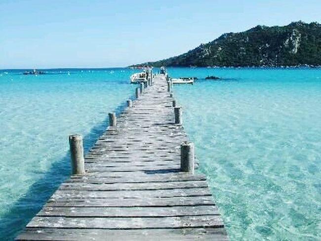 Les plages corse sont les plus belle 🌊🌴Plage Plage Corse Beautiful Magnifique Rêve Dream