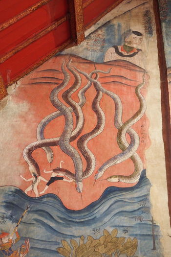 Scary snake eat