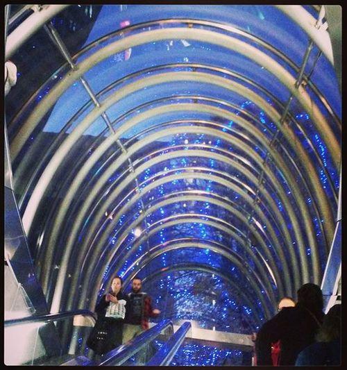 Fosteritos Metro Bilbao NormanFoster Architecture