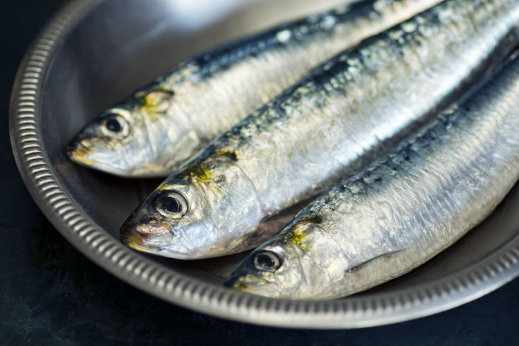 Close Up of Three Fresh Whole Portuguese Sardines in a Metal Bowl on a Dark Turquoise Background Green HEAD Raw Black Blue Bowl Close Up Fish Fishes Food Ingredient Macro Metal Nobody Portuguese Food Raw Fish Sardine Sardines Scales Seafood Silver  Sustainable Three Uncooked Whole