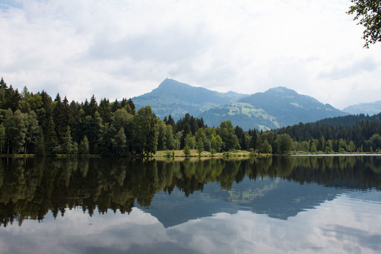 Schwarzensee Water Reflections Water Schwarzensee Mountain Lake Kitzbühel Symmetry Lake Reflection Sky Landscape Cloud - Sky Mountain Range Reflection Lake Pine Tree Needle - Plant Part Forest Woods WoodLand Evergreen Tree