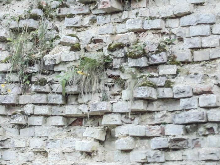 Wall Wall -