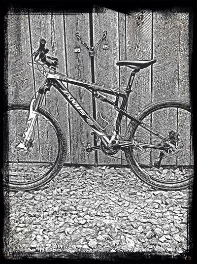 Jamis Dukar mountain bike Mountain Biking