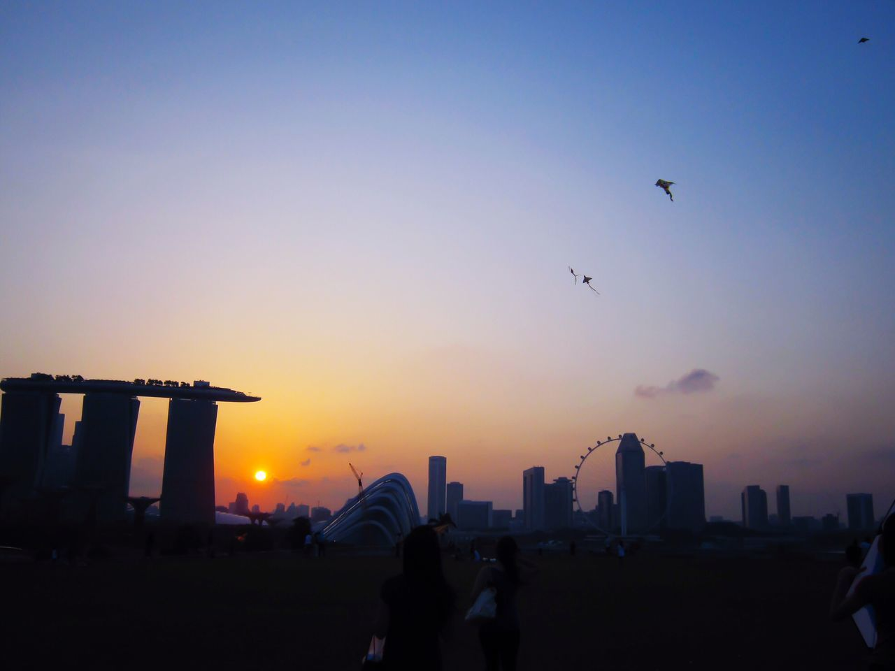 sunset, real people, architecture, built structure, building exterior, city, flying, silhouette, skyscraper, sky, bird, outdoors, leisure activity, cityscape, men, city life, clear sky, women, travel destinations, large group of people, urban skyline, lifestyles, animals in the wild, togetherness, nature, day, people