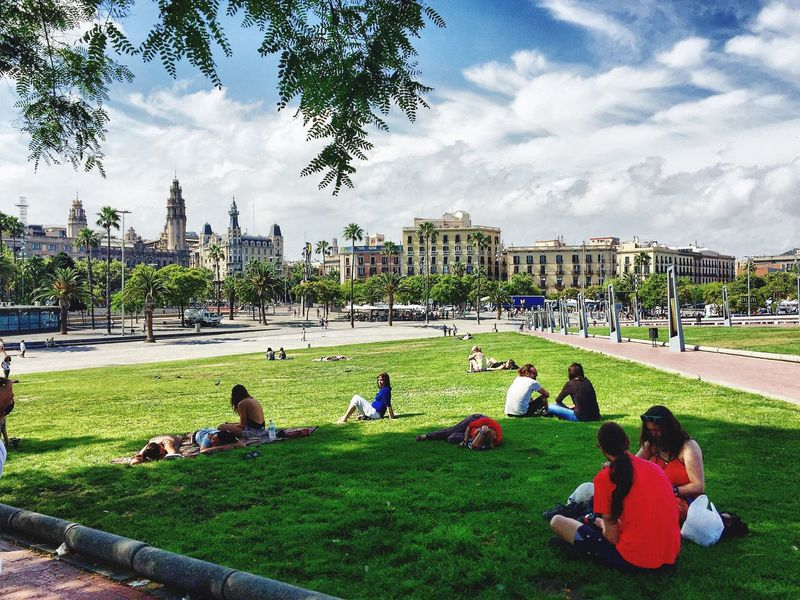 Barcelona Park Chilling Couples FreeTime SPAIN Summertime Summerviews Cityview Cityescape
