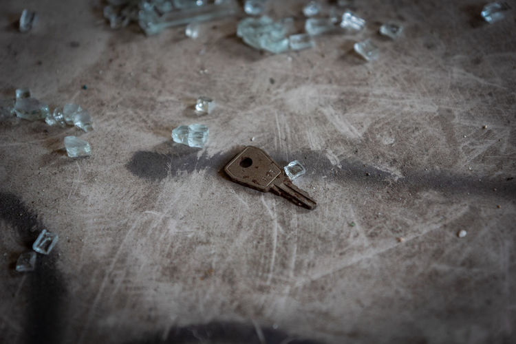 Selective Focus High Angle View Indoors  No People Day Close-up Still Life Flooring Simplicity Single Object Old Tool Art And Craft Work Tool Dirt Communication Animal Themes Nature Sign Key