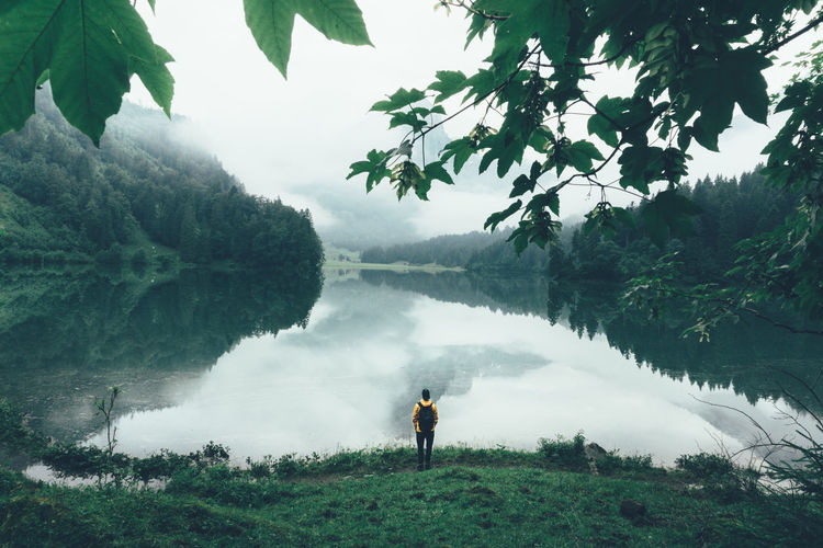 Man standing at the mountain lake in a yellow raincoat enjoying the peace of the moment Bad Weather Beauty In Nature Day Dreaming Dreamy Green Color Hi Hike Lake Landscape Lonely Misty Misty Morning Moody Sky Morning Mountain Lake Nature On The Way Outdoors Raincoat Rainy Rainy Day Tranquil Scene Tranquility Adventure Club