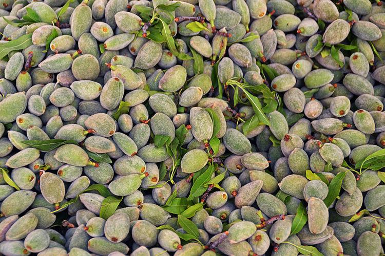 Full frame shot of unripe fruits at market