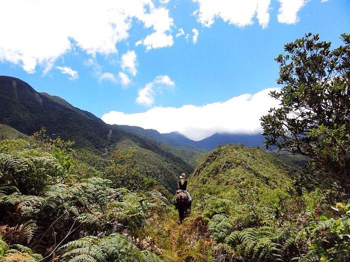 Women Who Inspire You Beautiful Nature Sunshine Hello World Beautiful Woman Woman Horseriding Enjoying Life Inspiring Ecuador