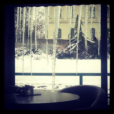Caffebridge Ice Winter Ilovezr