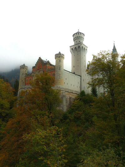 Schloss Neuschwanstein (I know not the most creative photo, but I kind of like it) Tree Building Exterior Architecture Built Structure Outdoors Sky Nature Day No People Low Angle View History Castle Forest Füssen, Bayern, Deutschland Schloss Neuschwanstein Neighborhood Map Your Ticket To Europe