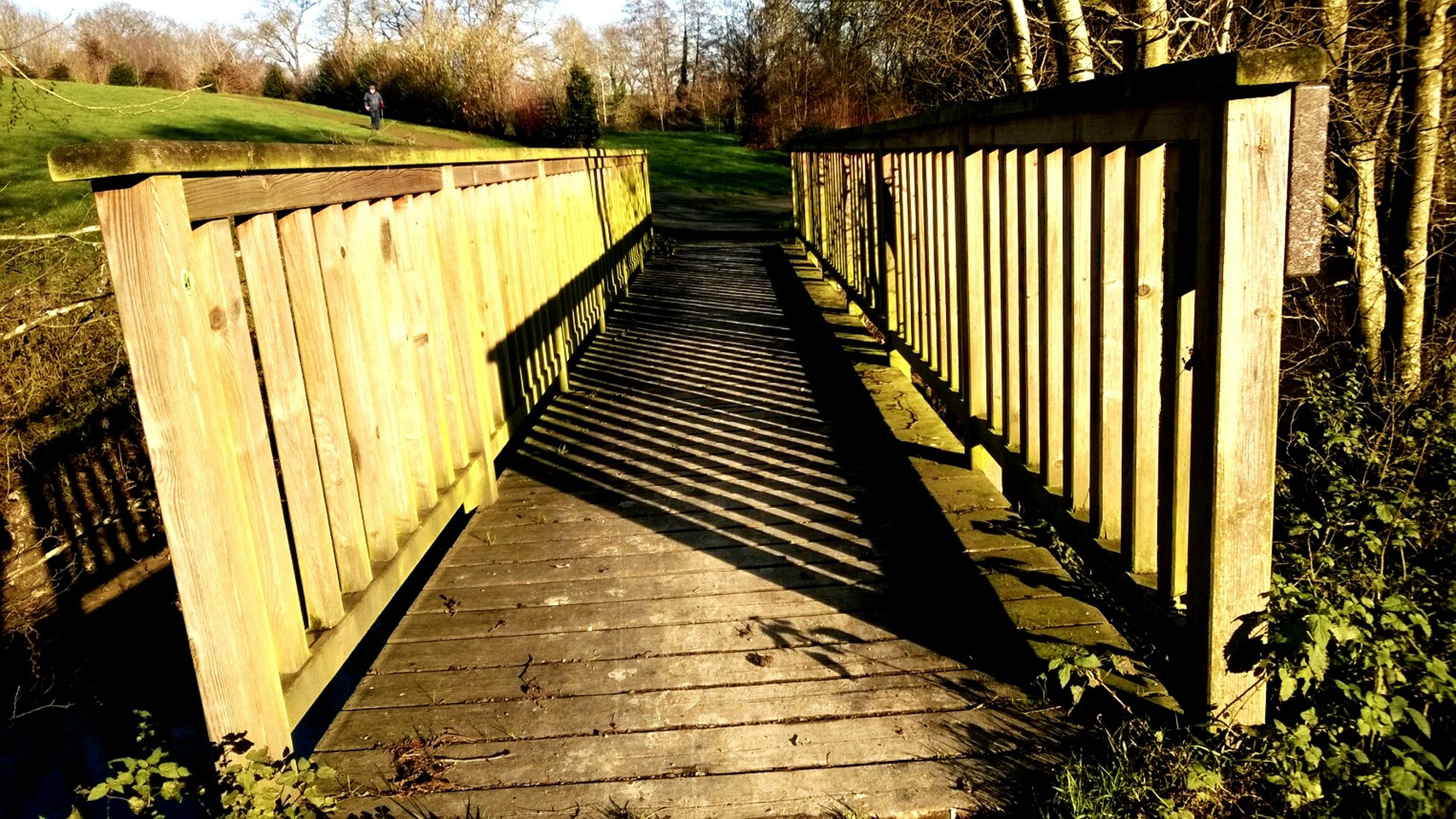 the way forward, tree, diminishing perspective, railing, connection, footbridge, built structure, vanishing point, narrow, grass, bridge - man made structure, wood - material, tranquility, long, walkway, architecture, boardwalk, plant, forest, nature
