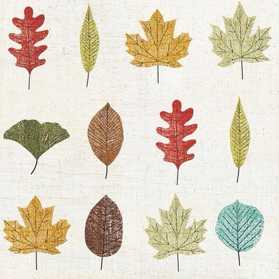 Autumn Feeling!