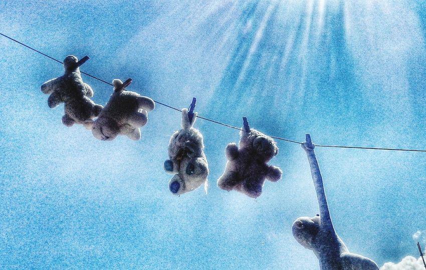 Criativo Toys Brinquedos Ursinhos De Pelúcia Mundodaimaginação Nao Sei Se No Céu Ou Embaixo D'água