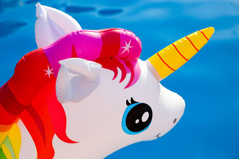 Representation Animal Representation No People Toy Art And Craft Blue Multi Colored Animal Animal Themes Inflatable  Close-up Creativity Floating Floating On Water Day Nature Water Focus On Foreground Pink Color Pool