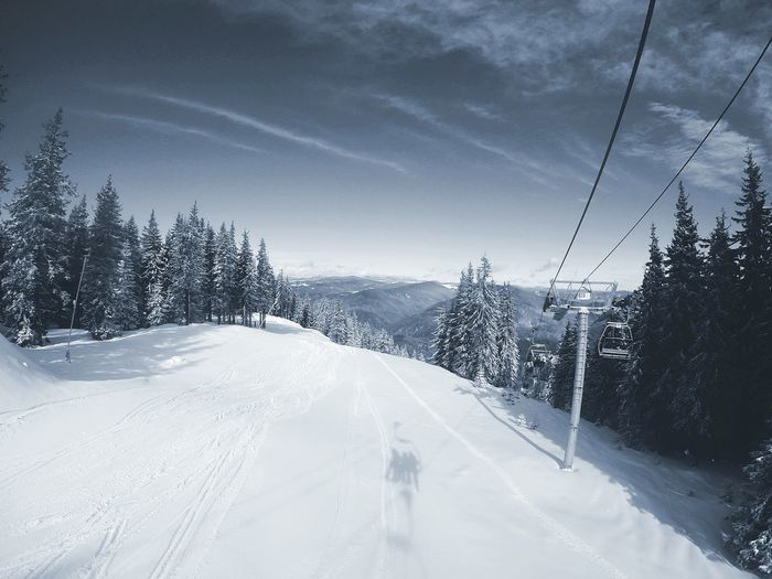 Ski Lift Over Snowy Landscape Amidst Trees Against Sky On Sunny Day