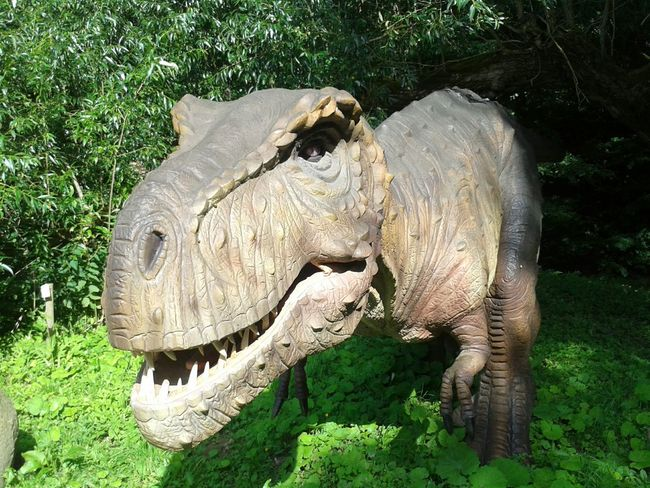 In Summer Vocation taking photos of Dinosaur Exposition in DinoPark at Klaipeda region
