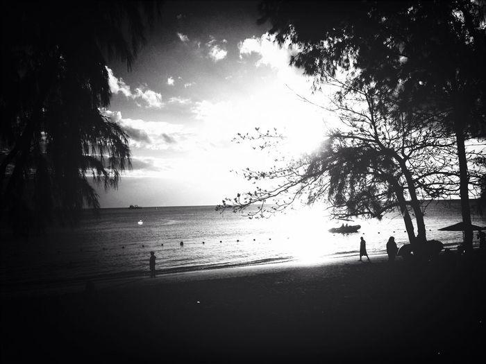 Blackandwhite Beach