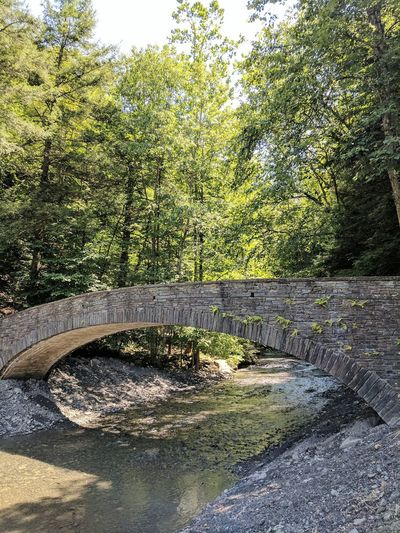 Day Outdoors Nature Sunlight Upstate NY Summer Bridge Landscape Syracuse