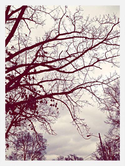 Seasons ,