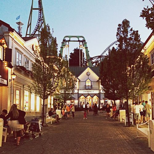 Light Roller Coaster Candy Shops