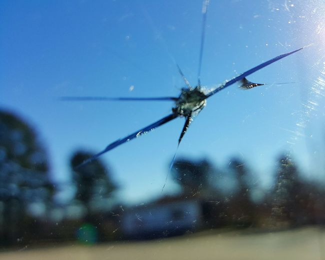 Macro Beauty Windshield Creative Photography Through My Windshield Cracked Windshield Samsung Galaxy S6 Edge Cellphone Photography Glass Reflections Check This Out! Wow!!😋 Macro Photography Macro Art Jeep Cherokee