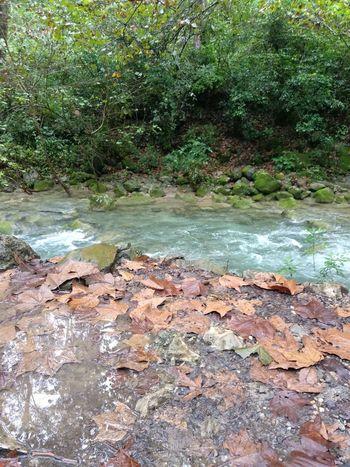 naturaleza River Nature Water