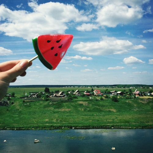 Food On The Go Food Nature Russia