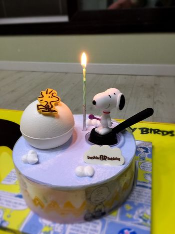 Ice Cream Cake Snoopy Br31 Enjoying Life Taking Photos Iphone6plus IPhoneography Ansan From My Point Of View